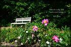 Spazieren im Schlosspark I