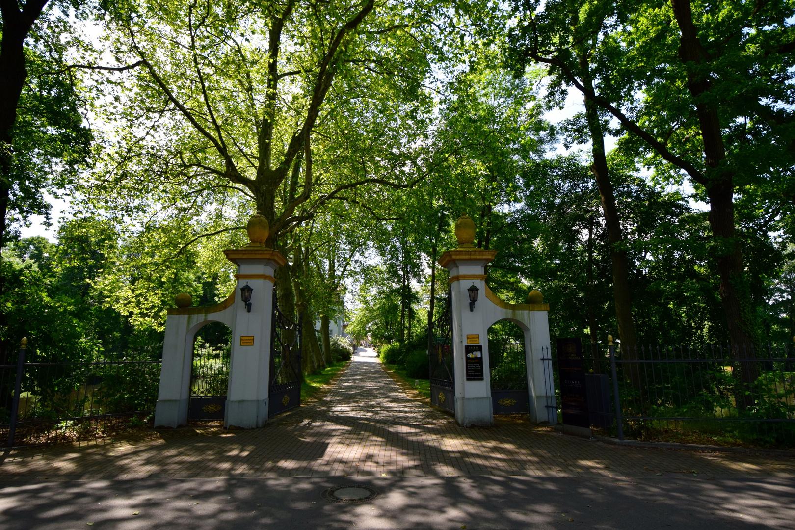 Spazieren im Schlosspark II