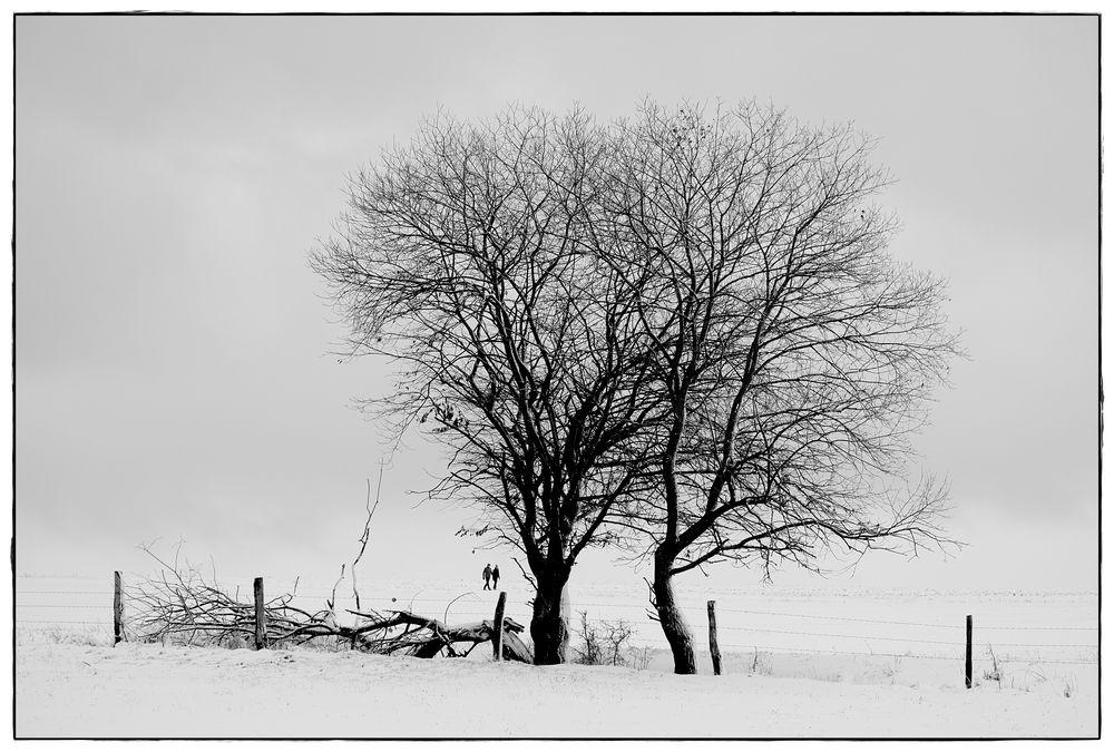 Spaziergänger im Winter