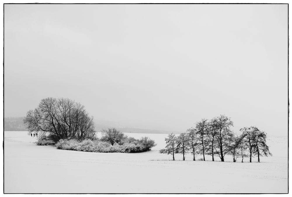Spaziergänger im Winter II
