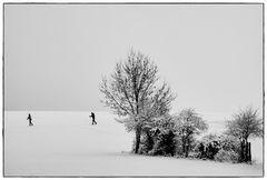 Spaziergänger im Winter III