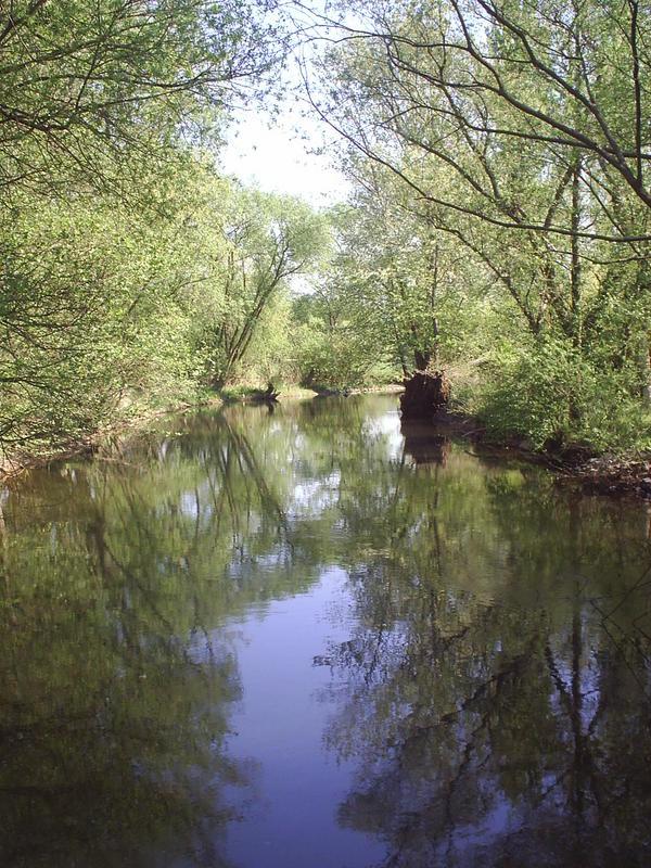 Spaziergang am Fluss 2