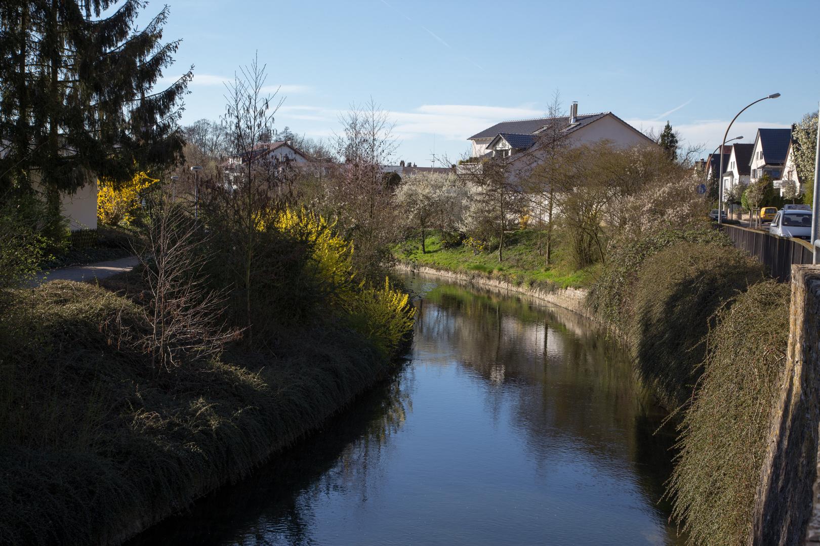 Spaziergang am Saalbach 16