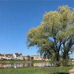 Spaziergang an der Elbe - Spiegeltag 04.08.2020 -