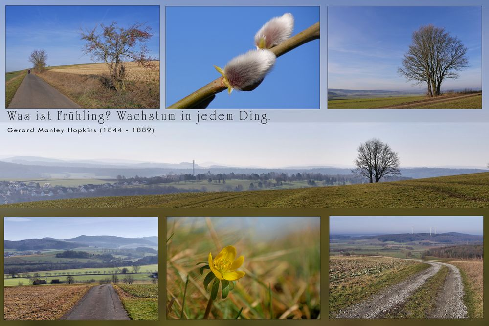 SPAZIERGANG bei Frühlingswetter