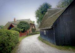 Spaziergang durch Ahrenshoop II