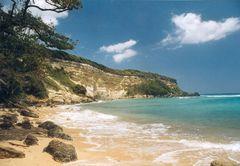 Spaziergang entlang des Strandes von Las Ballenas III