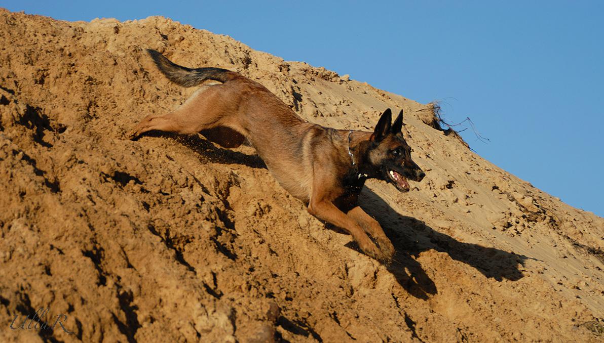 Spaziergang im Sand... :-)