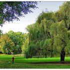 Spaziergang im Schlossgarten