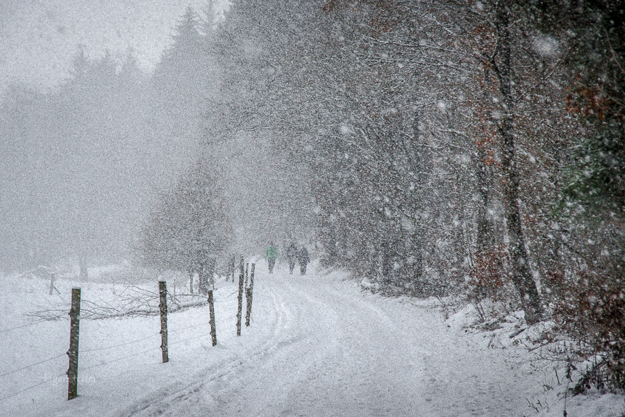 Spaziergang im Schnee, juhee
