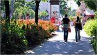 ... Spaziergang im Votivpark ...