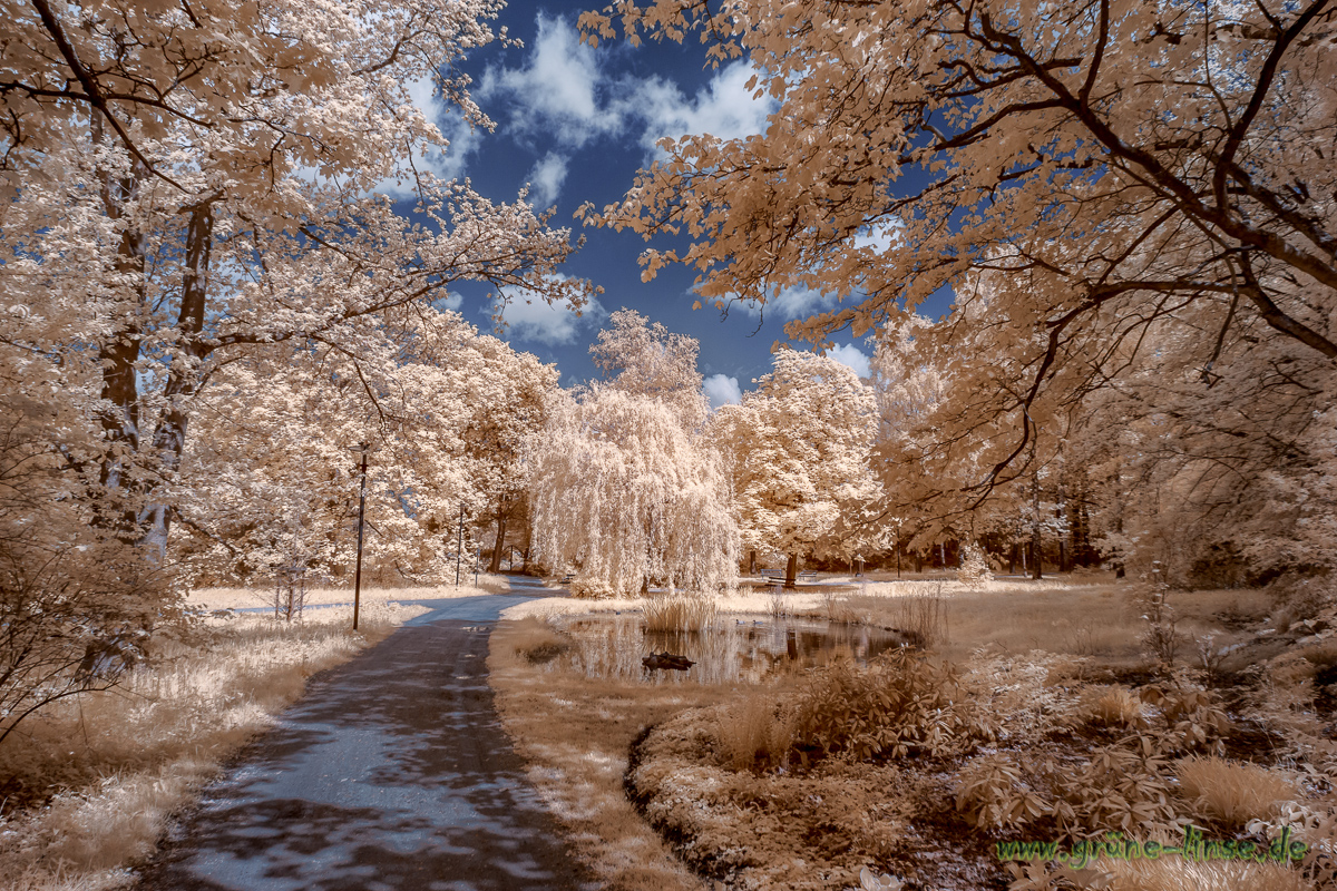 Spaziergang im Wunderland