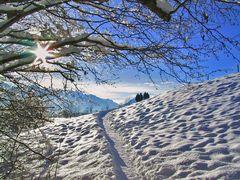 Spaziergang in Reit i. Winkel, wo die Sonne ein Stern ist  (Reloaded)