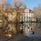 Spaziergang in Saalfeld (17) - Teich im Schlosspark