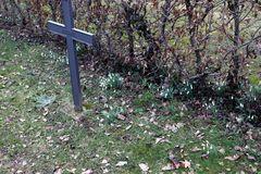 Spaziergang über den Friedhof