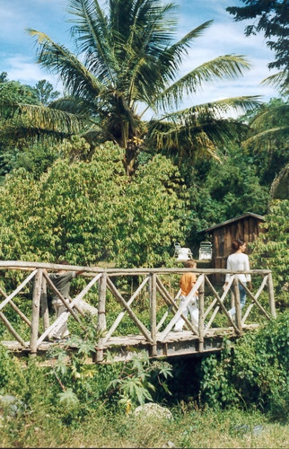 Spaziergang um unser Hotel in Jarabacoa II