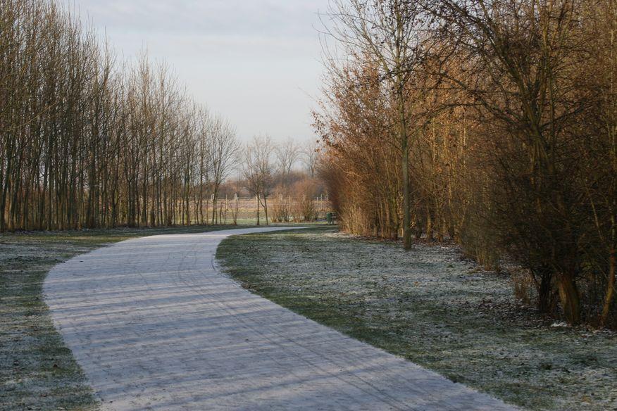 Spazierweg am Naturschutzgebiet in Wesseling