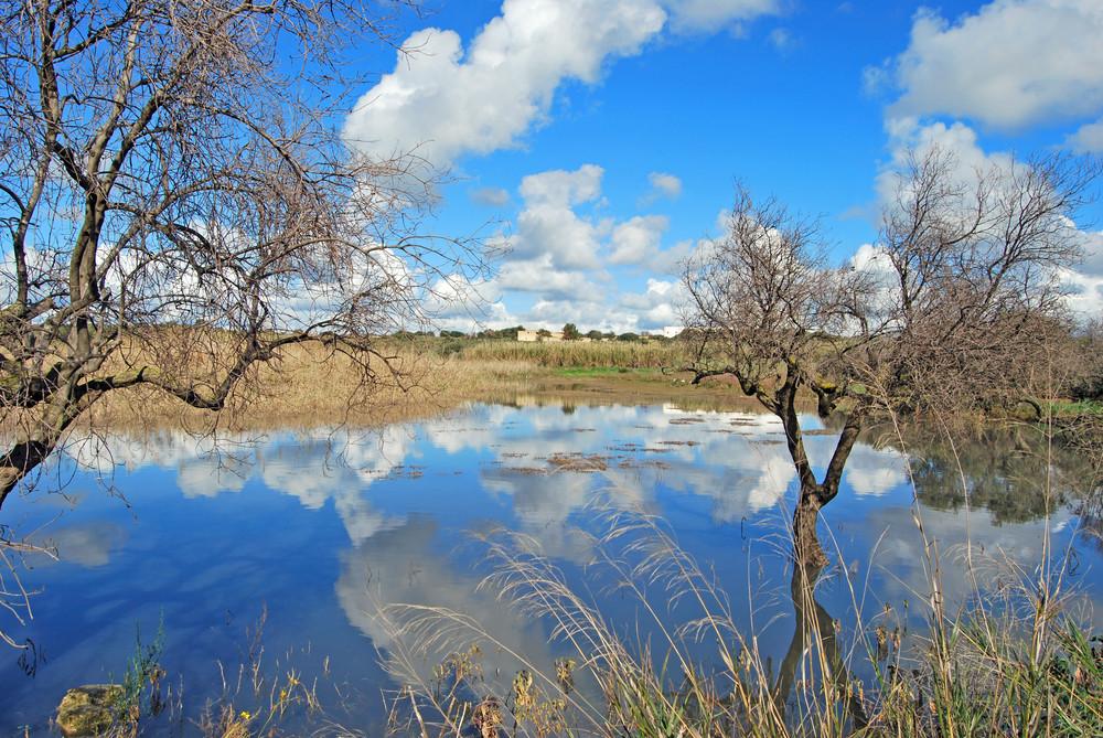 """""""Specchio d'acqua"""" Pantano Leone - Campobello di mazara (TP)"""