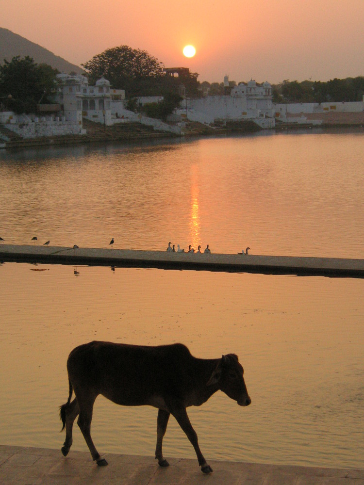 special indian sunset