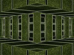 special windows 3