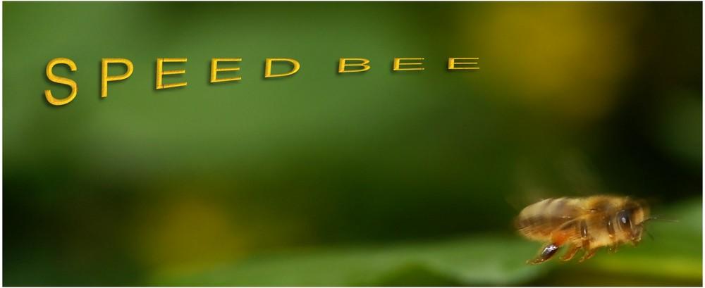 SPEED BEE