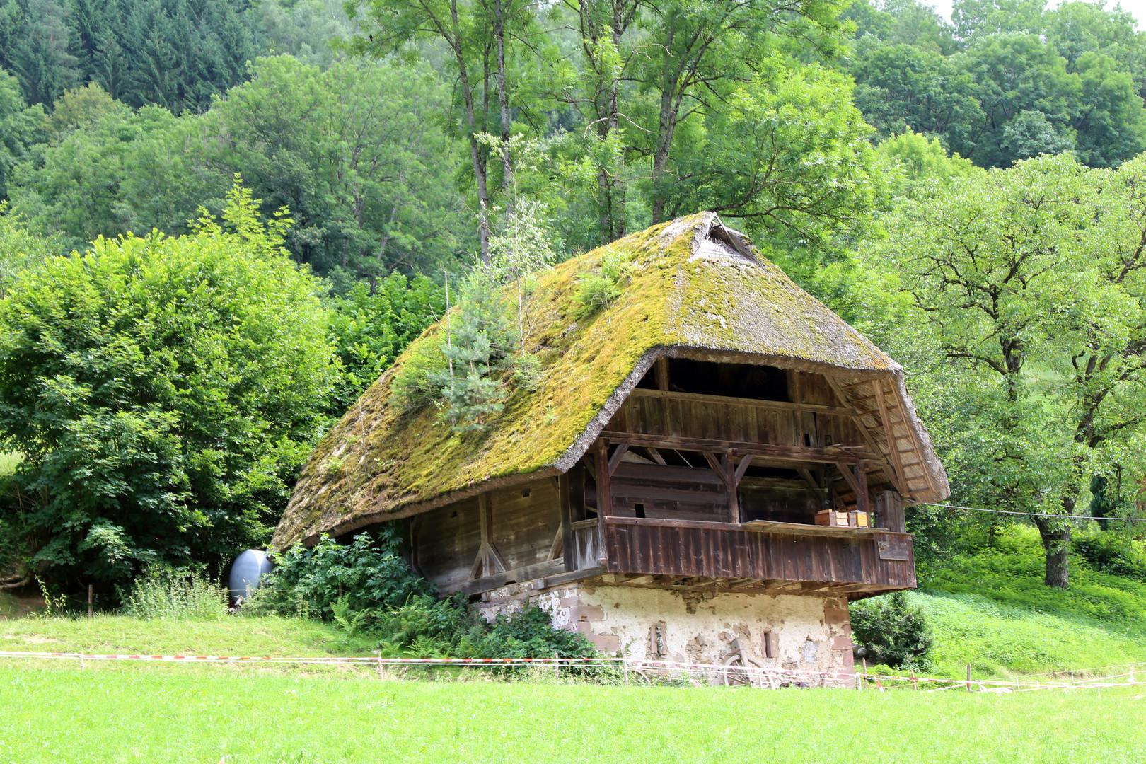 Speicher, Schwarzwald, Hausach
