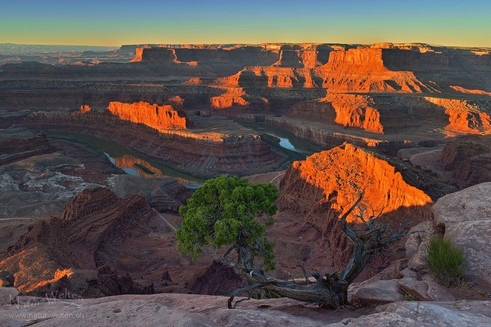 Spektakulärer Sonnenaufgang im Canyon - DRI