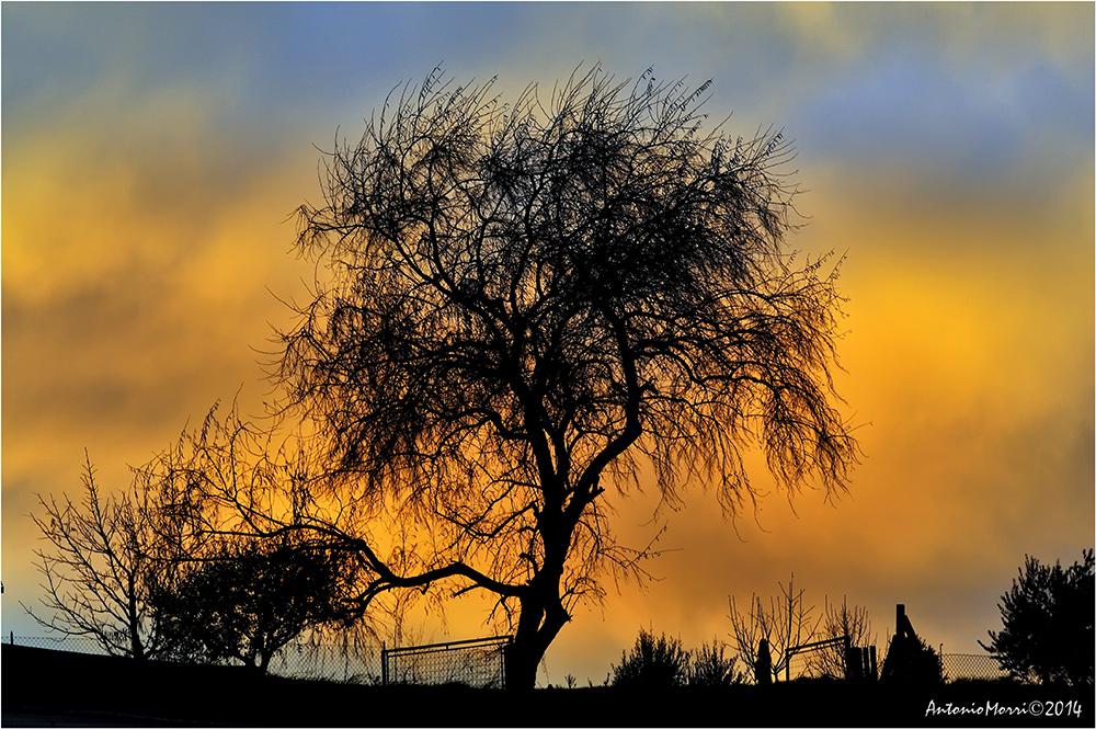 Spennellando il tramonto