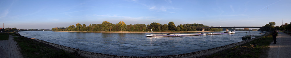 Speyerer Rhein