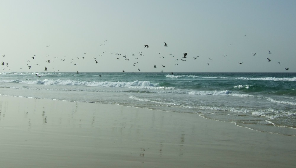 spiaggia dakar