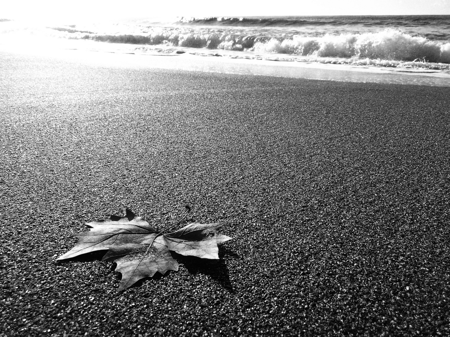 spiaggia in autunno