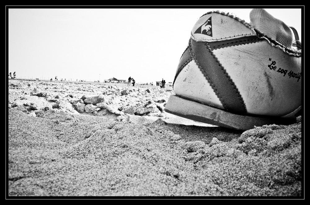 Spiaggia vista da un granchio