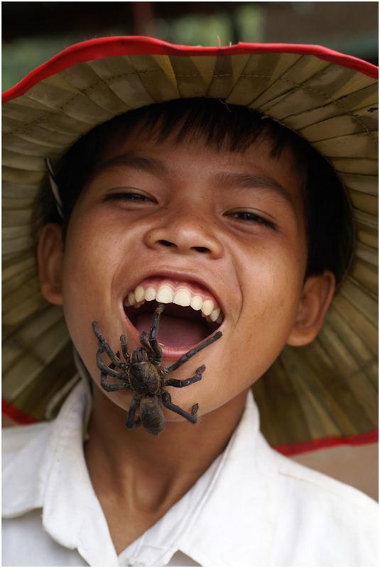 Spiderboy