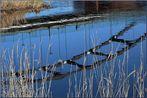 Spiegel Brücke