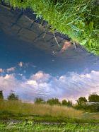 ...Spiegel der Natur...