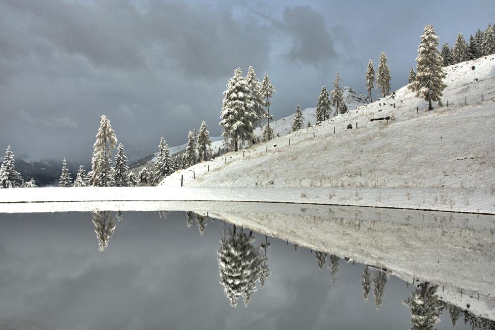 Spiegel der Natur...