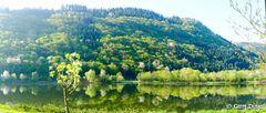 Spiegel-Panorama Mosel 20150423