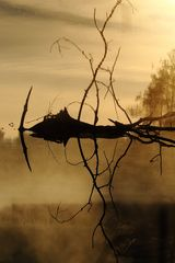 Spiegelbild zum Sonnenaufgang