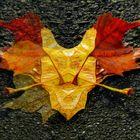 Spiegeltag : 2 Blätter morgens -noch morgenfeucht-, ...  nahezu etwa selbige Träume gehabt,