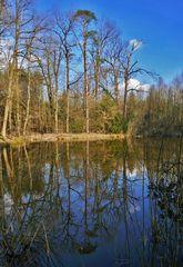 Spiegeltag: Am Lindensee