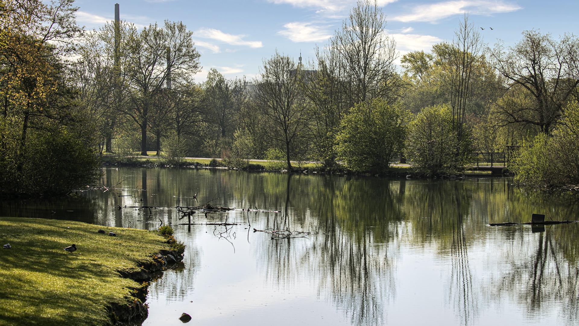 Spiegeltag - Im Stadtpark 01