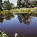Spiegeltag : Reitersee in Zell im Fichtelgebirge
