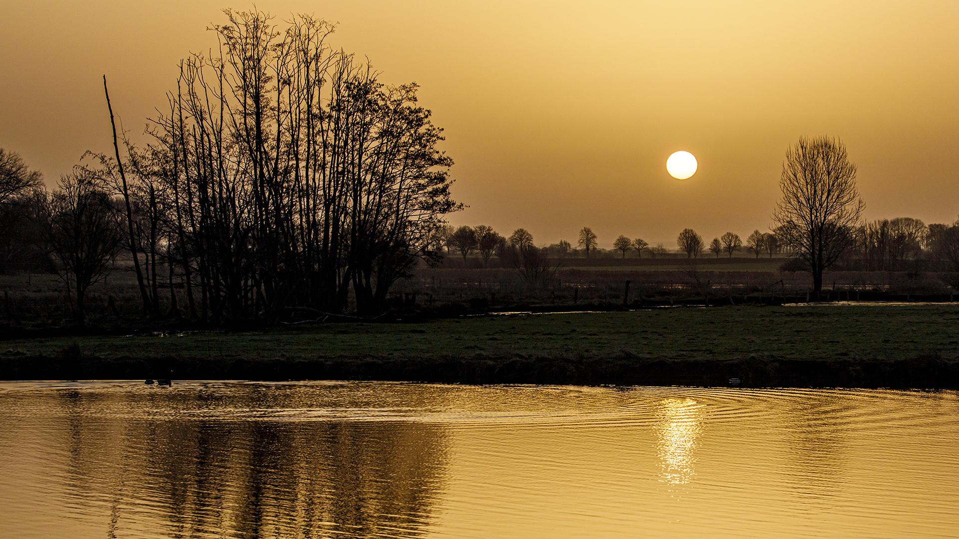 Spiegeltag - Saharasonne
