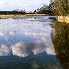 Spiegeltag - Überschwemmung