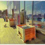 Spiegeltag- Yachthafen im Schaufenster