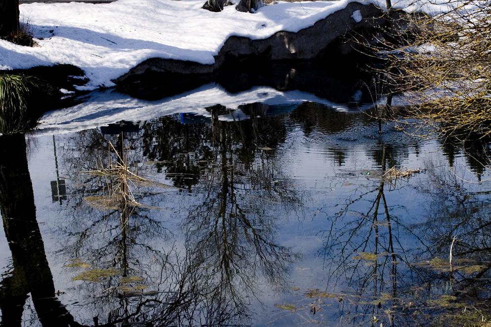 spiegelung 2