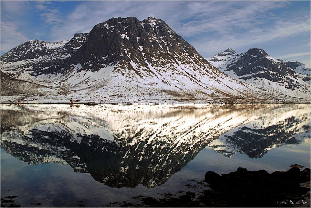 Spiegelung am Fjord (2)