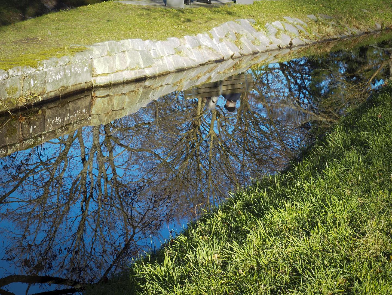 Spiegelung am Fluss Ufer