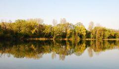 Spiegelung am See # Reflejos en el lago