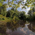 Spiegelung auf dem Teich